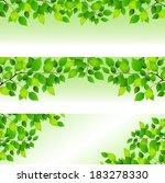 fresh green leaf background   Shutterstock .eps vector #183278330