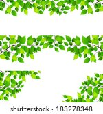fresh green leaf background   Shutterstock .eps vector #183278348