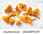 Top view of fresh chanterelles on white background