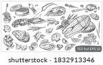 set of vector images of sea...   Shutterstock .eps vector #1832913346