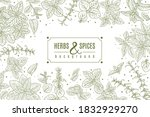herbs and spices poster.... | Shutterstock .eps vector #1832929270