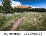 Small photo of Greenhorn Mountain Trail, Wet Mountains, Colorado