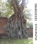 Wat Mahathat Is The Temple That ...