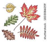 set of hand drawn leaves | Shutterstock .eps vector #1833086059
