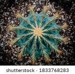 Golden Barrel Cactus  Golden...