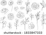 Vector Set Of Hand Drawn ...