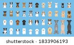 Dogs Vector Cute Puppy Pet...