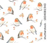 Robin Birds And Berries Rowan...