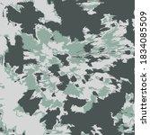 vector swirl. ethnic background.... | Shutterstock .eps vector #1834085509