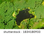Elevated View Of Green Small Bog Marsh Swamp Wetland And Green Forest Landscape In Summer Day. Attitude View. Forest In Bird