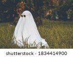Ghost Photoshoot And Halloween...
