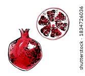 pomegranate. fruit vector...   Shutterstock .eps vector #1834726036