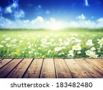 field of daisy flowers and wood ... | Shutterstock . vector #183482480