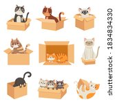 Cats In Boxes. Cute Stickers...