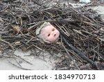 A Horrifying Doll's Head That ...
