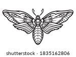 deaths head hawk moth tattoo... | Shutterstock .eps vector #1835162806