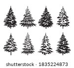 a set of black spruce trees....   Shutterstock .eps vector #1835224873