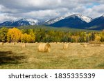 Autumn Hay Bales In Field With...