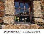 Checkered Window Stone Framed ...