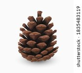 Pine Cone. Realistic 3d Object...