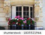 Parisian Window And Balcony...