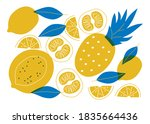 fruit tropial organic flat... | Shutterstock .eps vector #1835664436