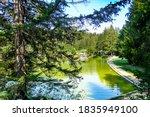 Small photo of Picturesque Lake Bloke in the summer, Nova Vas, Slovenia.