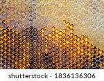 Drop Of Bee Honey Drip From...