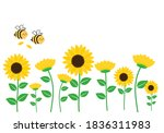 Sunflower Field With Flying Bee ...