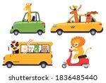 cute cartoon animals drivers in ...   Shutterstock .eps vector #1836485440