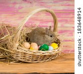 Small photo of Funny little rabbit among Easter eggs in velour grass
