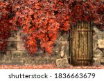 Autumn Vintage Stone Door Retro