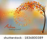 autumn nature background with a ... | Shutterstock .eps vector #1836800389