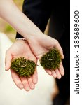 wedding rings on the moss | Shutterstock . vector #183689600