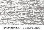 texture of the bark of douglas... | Shutterstock .eps vector #1836916003