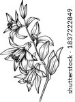 vector flower tattoo template. ... | Shutterstock .eps vector #1837222849