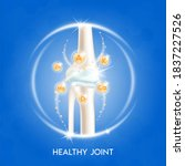 arthritis knee joint. pain in... | Shutterstock .eps vector #1837227526