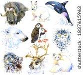 Polar Animals Set. Arctic Fauna....