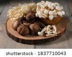 Various Type Of Mushroom Set On ...