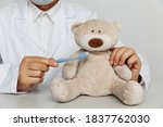 Dentist Cleaning Teeth Of Teddy ...
