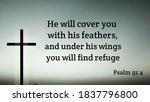 He Will Cover You With His...