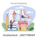 anatomy school subject.... | Shutterstock .eps vector #1837798069
