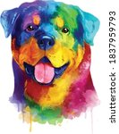 Rottweiler Colorful Dog...