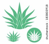 agave. isolated icons on white...   Shutterstock .eps vector #183803918