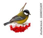 a titmouse on a winter branch...   Shutterstock .eps vector #1838051839