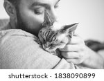 Close Up Of Cat And Man. Black...
