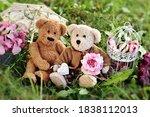 Two Cute Teddy Bears In Vintage ...