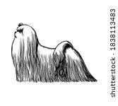 realistic maltese bichon. dog... | Shutterstock .eps vector #1838113483