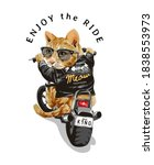 Enjoy Ride Slogan With Cute Cat ...