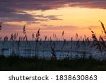 sunrise and sea oats at the...   Shutterstock . vector #1838630863